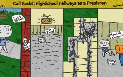 Cali Socks Cartoon 1