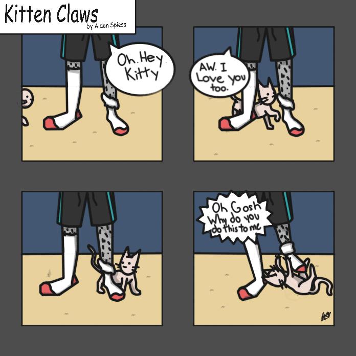 Kittysocks 2019